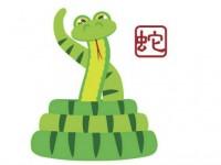Horoskop chiński na rok 2016 – Wąż